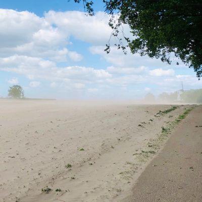 Forse wind verplaatst veel zand