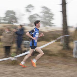 - Foto Bert van den Broek - - deze