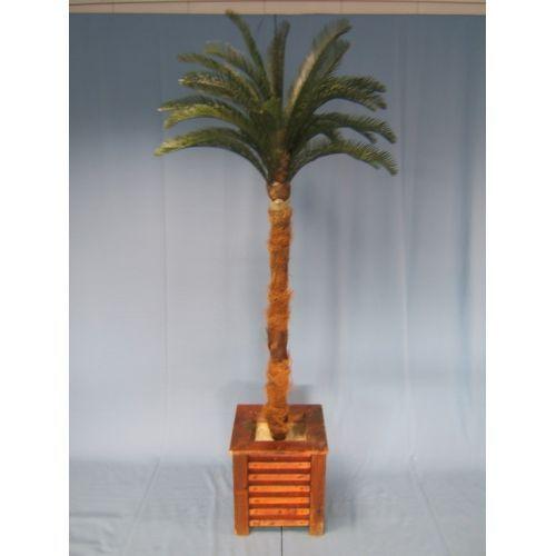 Palmboom 220cm.