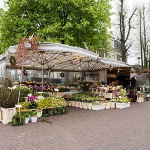 Bloemenhandel                                                 Cristel de Groot
