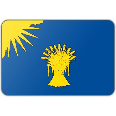 Gemeente Reusel-De Mierden vlag (70x100cm)