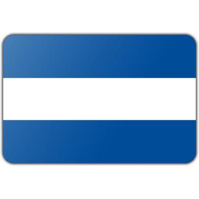 Gemeente Almelo vlag (200x300cm)