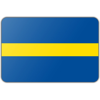 Gemeente Borne vlag (70x100cm)