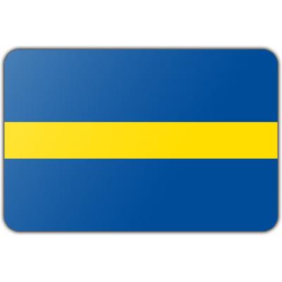 Gemeente Borne vlag (150x225cm)