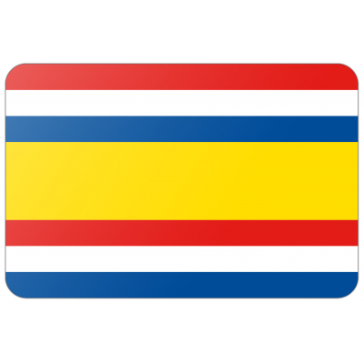 Gemeente Tholen vlag (70x100cm)