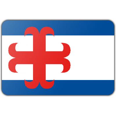 Gemeente Zutphen vlag (70x100cm)