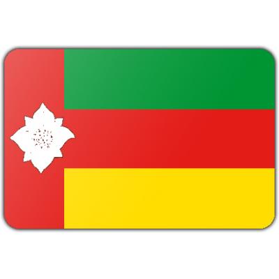 Gemeente Tynaarlo vlag (150x225cm)