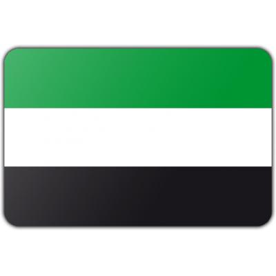 Gemeente Leek vlag (70x100cm)