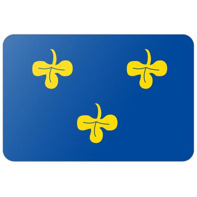 Gemeente Zoeterwoude vlag (70x100cm)