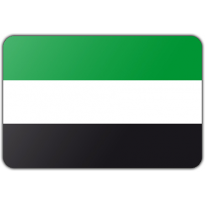 Gemeente Leek vlag (200x300cm)