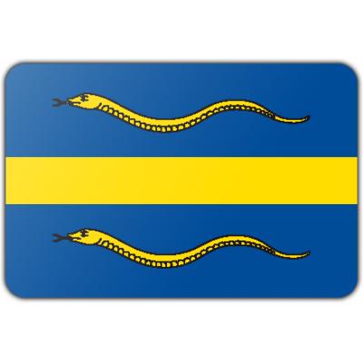 Gemeente Pijnacker-Nootdorp vlag (70x100cm)