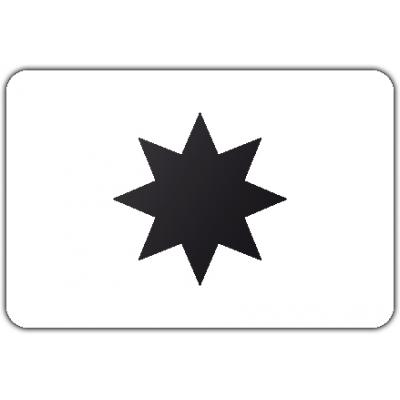 Gemeente Alphen aan den Rijn vlag (70x100cm)