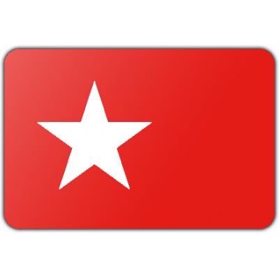 Gemeente Maastricht vlag (150x225cm)