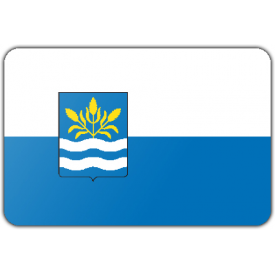 Gemeente Haarlemmermeer vlag (200x300cm)