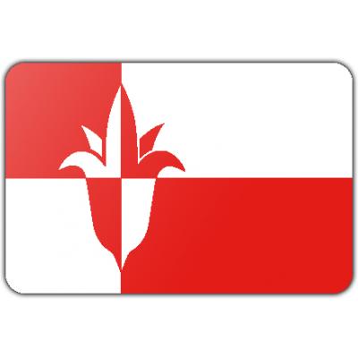 Gemeente Bernheze vlag (70x100cm)