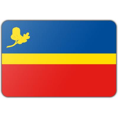 Gemeente Waalre vlag (70x100cm)