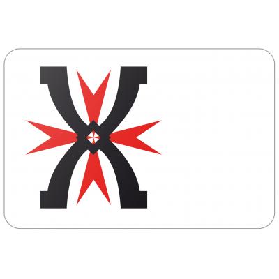 Gemeente Montfoort vlag (70x100cm)