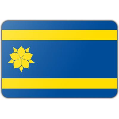 Gemeente Hattem vlag (150x225cm)