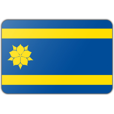 Gemeente Hattem vlag (200x300cm)