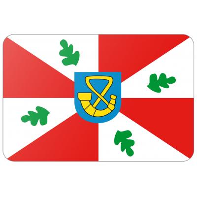 Gemeente Tytsjerksteradiel vlag (70x100cm)