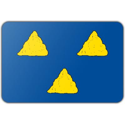 Gemeente Tubbergen vlag (150x225cm)