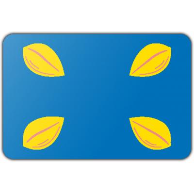 Gemeente Hilversum vlag (70x100cm)