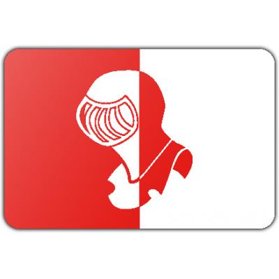 Gemeente Helmond vlag (70x100cm)