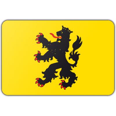 Gemeente Hulst vlag (200x300cm)