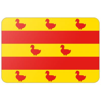 Gemeente Grave vlag (200x300cm)