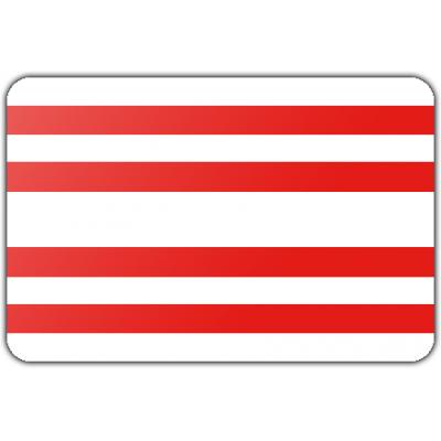 Gemeente Gorinchem vlag (70x100cm)