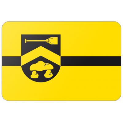 Gemeente Borger-Odoorn vlag (200x300cm)