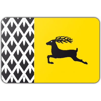 Gemeente Nunspeet vlag (100x150cm)