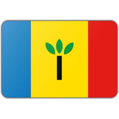 Gemeente Landgraaf vlag (70x100cm)