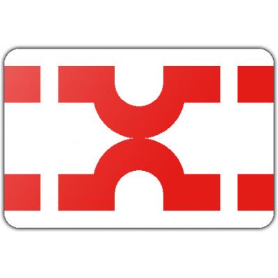 Gemeente Losser vlag (150x225cm)