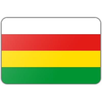 Gemeente Dantumadiel vlag (70x100cm)