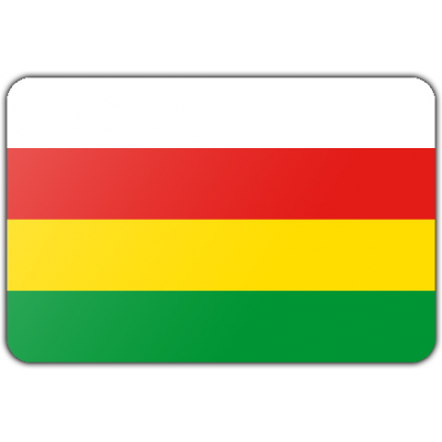Gemeente Dantumadiel vlag (200x300cm)