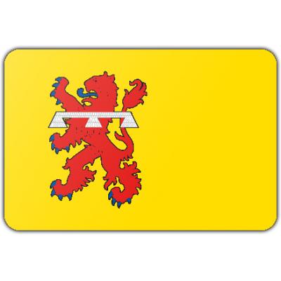 Gemeente Teylingen vlag (200x300cm)