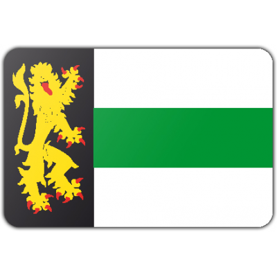 Gemeente Druten vlag (100x150cm)