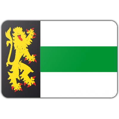 Gemeente Druten vlag (150x225cm)
