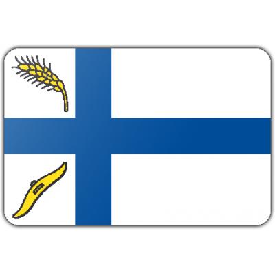 Gemeente Wierden vlag (70x100cm)