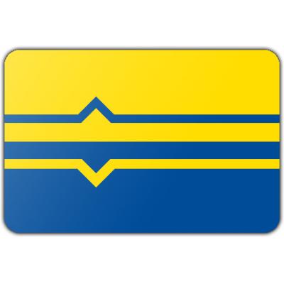 Gemeente Lochem vlag (200x300cm)