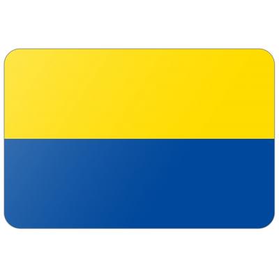Gemeente Zandvoort vlag (200x300cm)