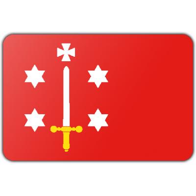 Gemeente Haarlem vlag (100x150cm)