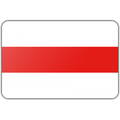 Gemeente Brielle vlag (100x150cm)