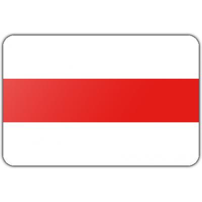 Gemeente Brielle vlag (150x225cm)