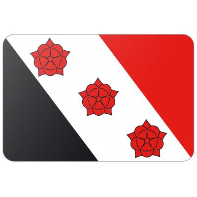 Gemeente Roosendaal vlag (200x300cm)