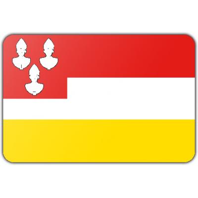 Gemeente Eemnes vlag (70x100cm)