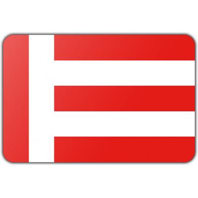 Gemeente Eindhoven vlag (200x300cm)