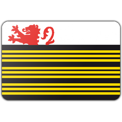 Gemeente Eersel vlag (70x100cm)