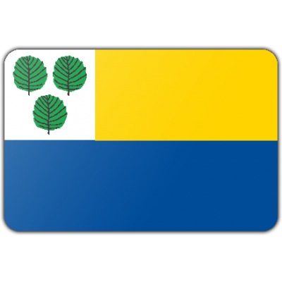 Gemeente Oldebroek vlag (100x150cm)